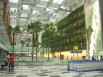 Arrival Hall with Green Walls