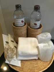 Toiletries and complimetary water
