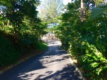 Slope road towards the beach