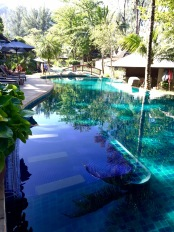 Relaxing water beds