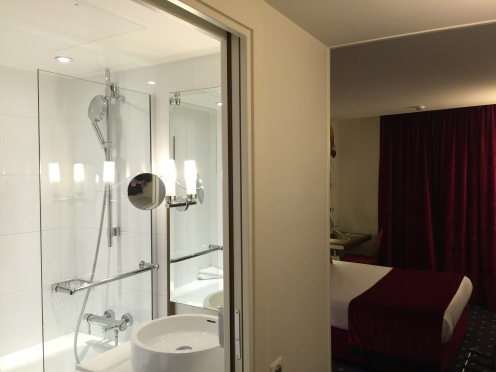Bathroom and Room View