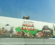Dubai Safari Park