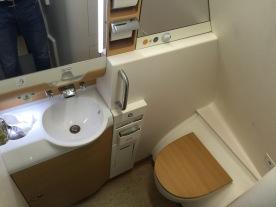 Generous washroom