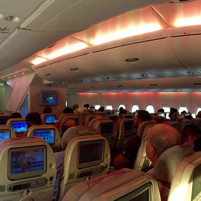 View from seat 50A