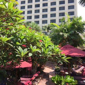 Hotel from he pool