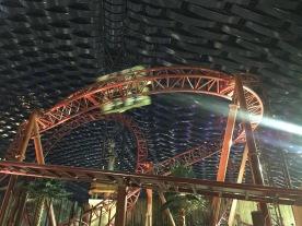 Predator coaster