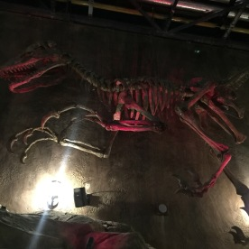 Velociraptor queue detiail