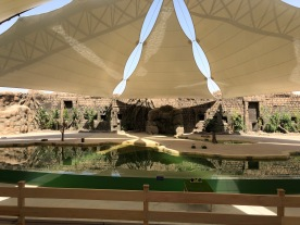 IMG_83161 Dubai Safari Park Review .
