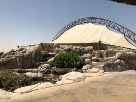 IMG_83361 Dubai Safari Park Review .