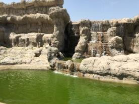 IMG_83491 Dubai Safari Park Review .