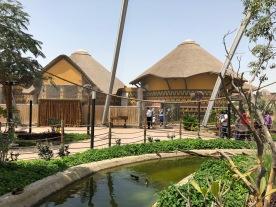 IMG_84241 Dubai Safari Park Review .