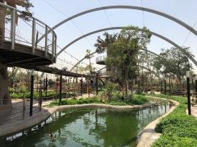 IMG_84261 Dubai Safari Park Review .