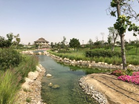 IMG_84711 Dubai Safari Park Review .