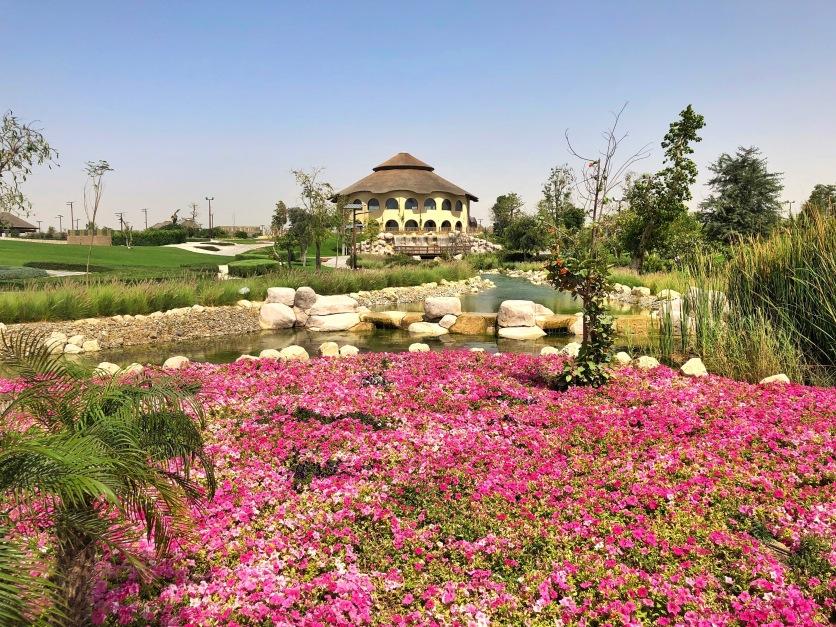 IMG_85181 Dubai Safari Park Review .